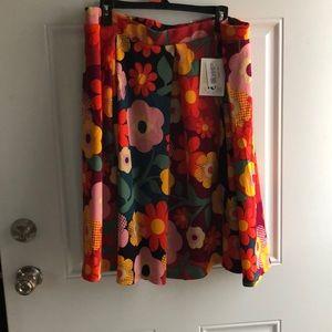 Dresses & Skirts - Never been worn lularoe